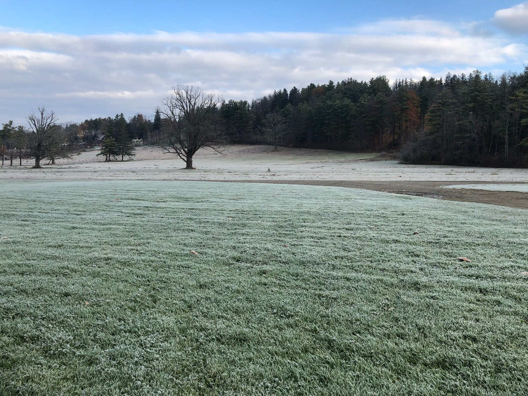 Green New England field covered in frost.