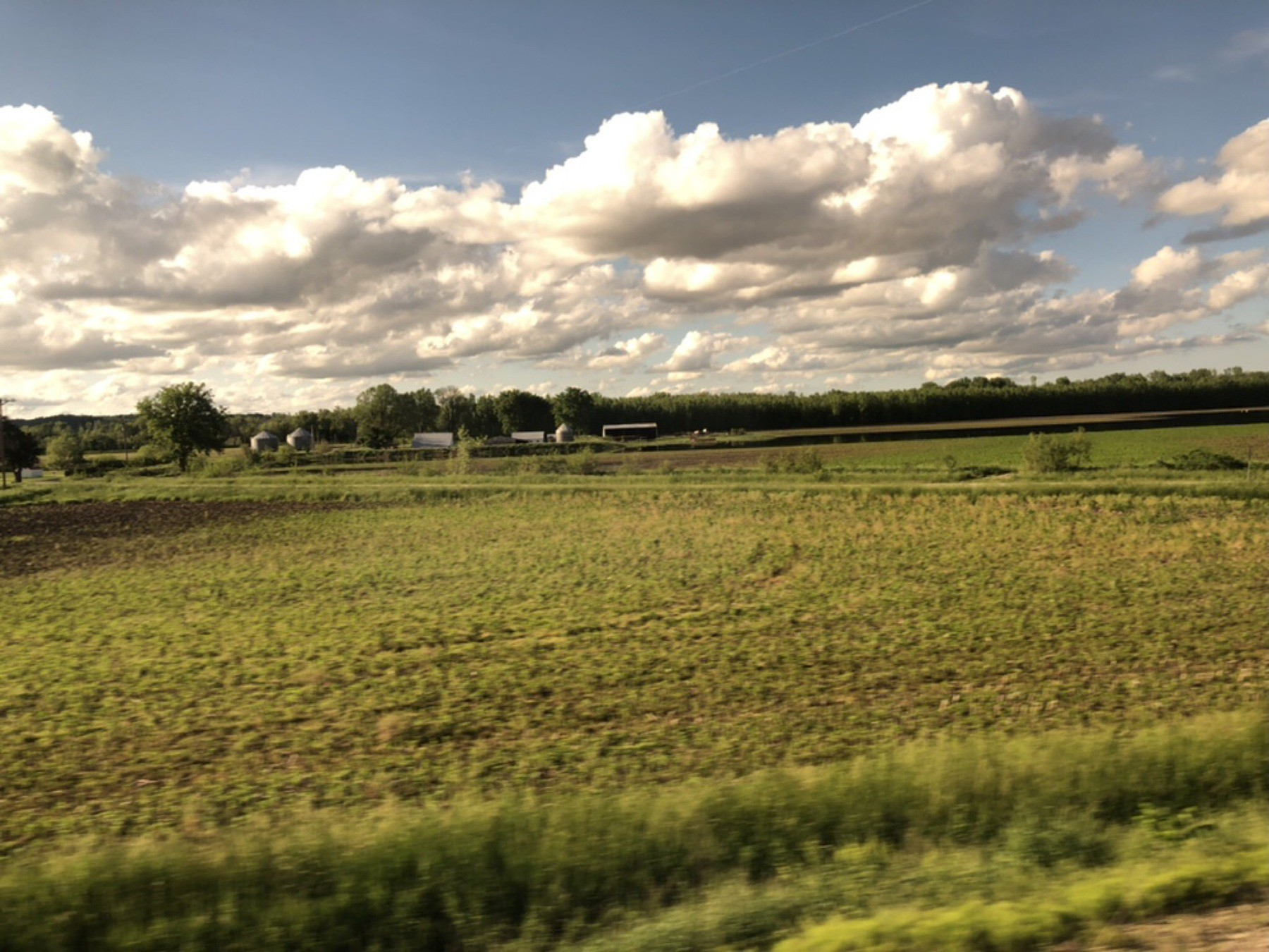 View of lush midwestern field from train window
